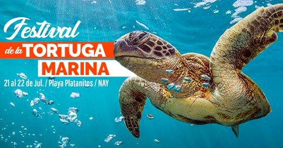 festival-de-la-tortuga-marina